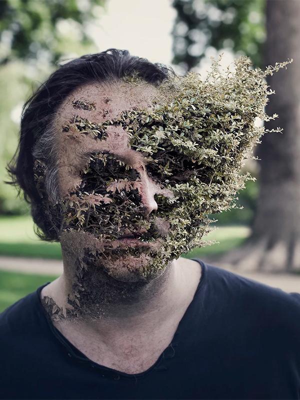 Treebeard #02, par Cal Redback sur le blog La Retouche photo.