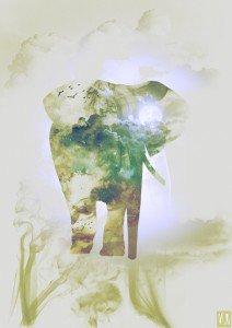 Elephant_Smoky nature-01