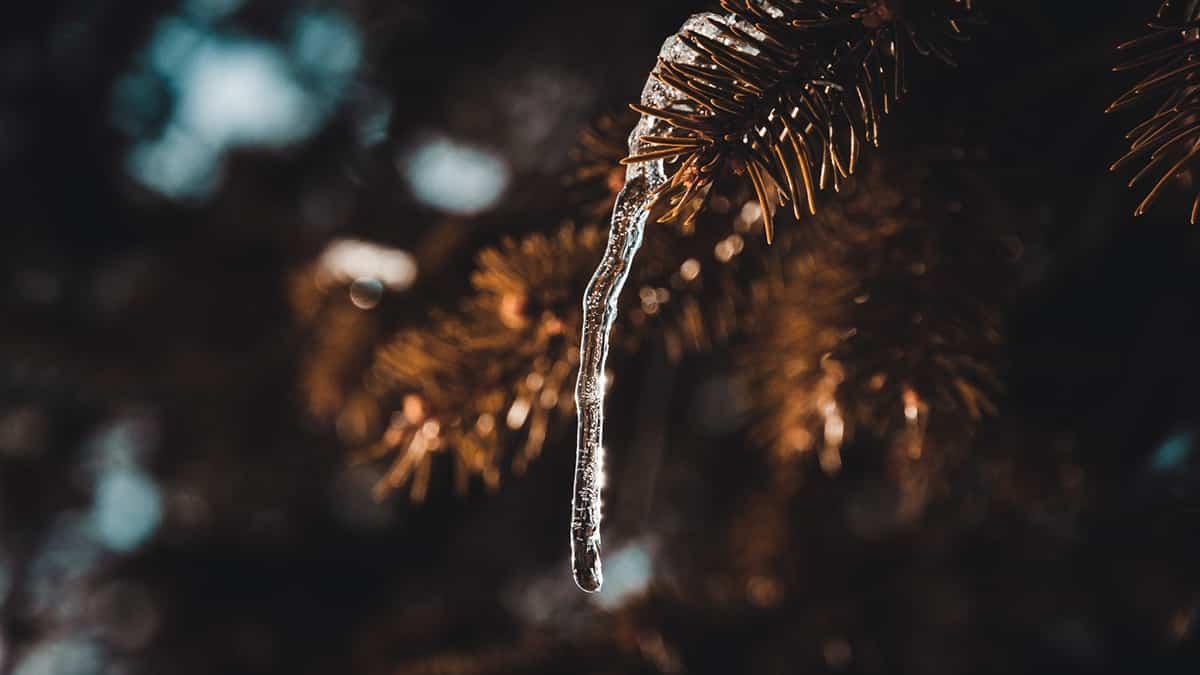 Sept mai, winter 2 par Thomas Tourral sur le blog La Retouche photo