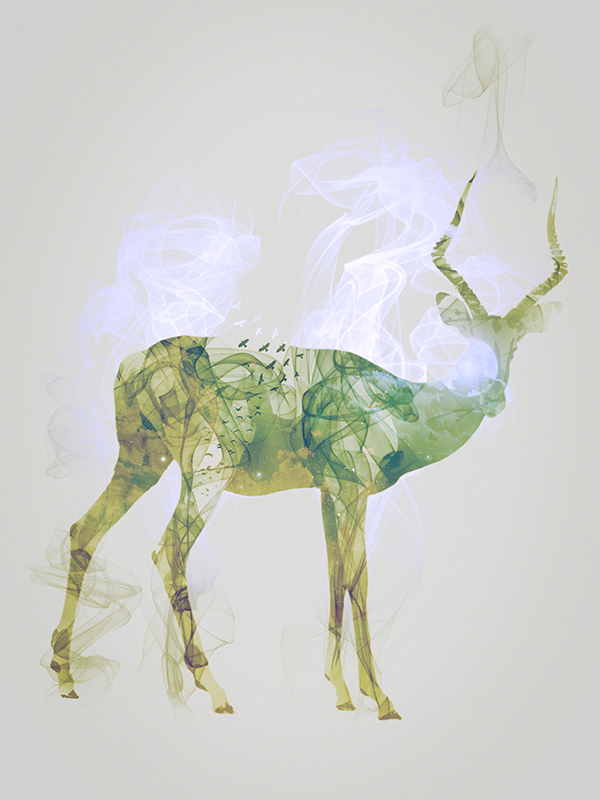 "Impala, piece 10/10 of the serie ""Smoky nature"" realized by Tpex."