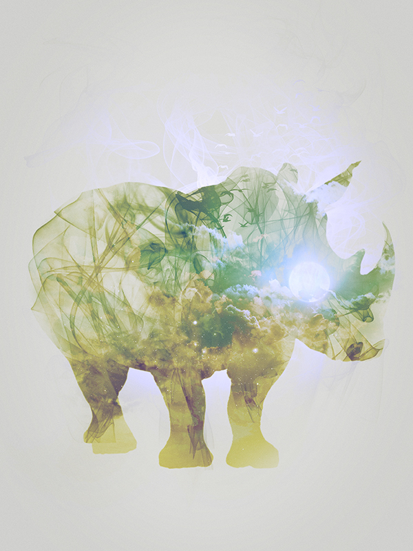 "Rhinoceros, piece 5/10 of the serie ""Smoky nature"" realized by Tpex."