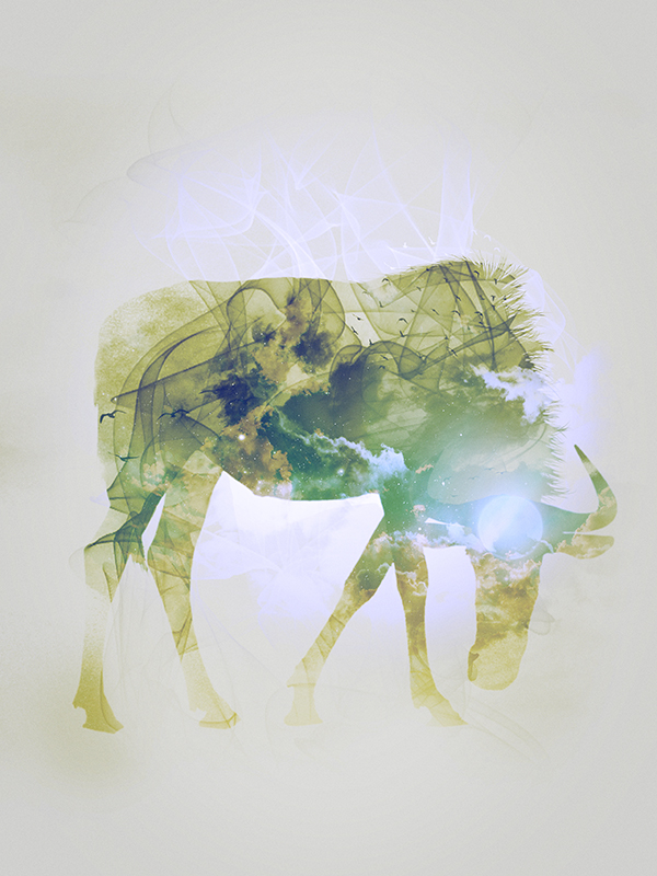 "Wildbeest, piece 6/10 of the serie ""Smoky nature"" realized by Tpex."