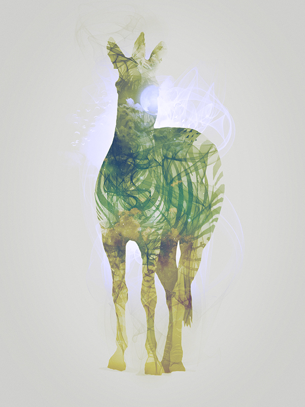 "Zebra, piece 7/10 of the serie ""Smoky nature"" realized by Tpex."
