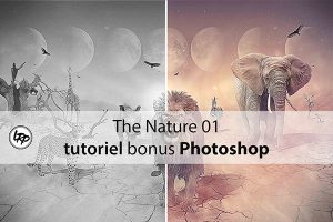 The Nature 01, tutoriel bonus Photoshop sur le blog La Retouche photo