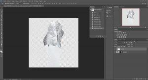 Etape 01, créer une double exposition dans Photoshop / La retouche photo, le blog