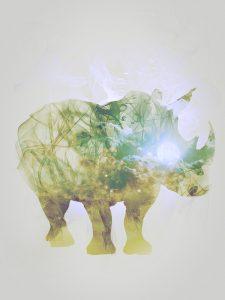 Rhinoceros, Smoky nature I