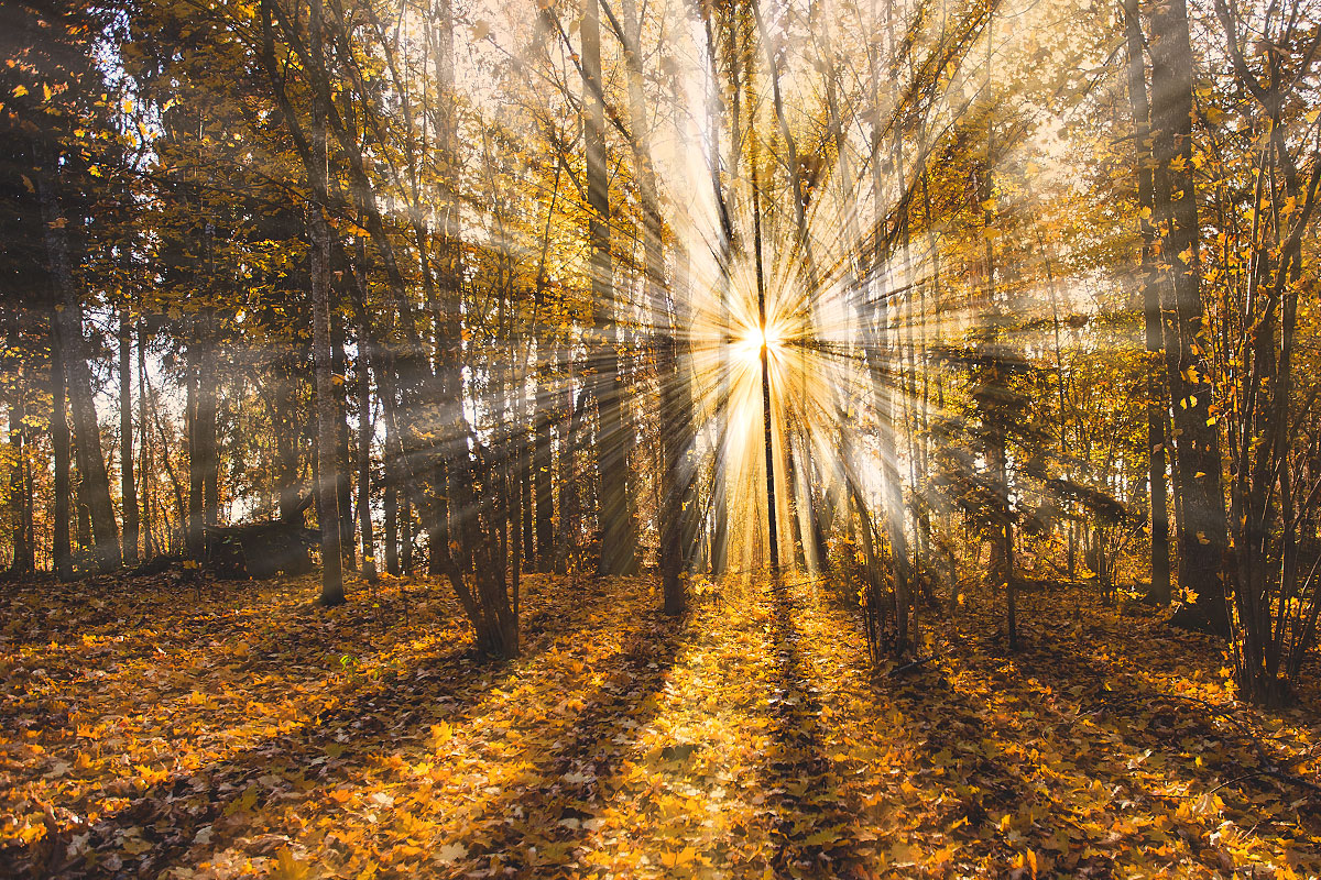 rayons-lumineux-photoshop